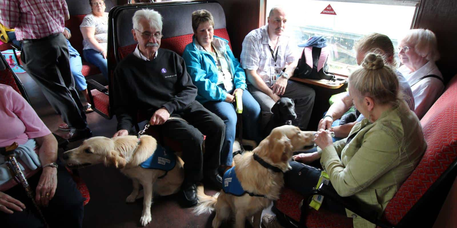 Guide Dogs NI group travelling on one of our trains. Dogs are very welcome!