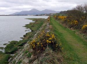 The old route of the railway into Dundrum is now used as a coastal walkway